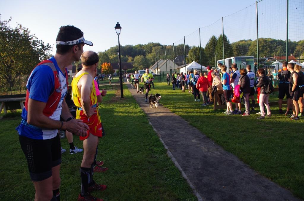 trail_chiens